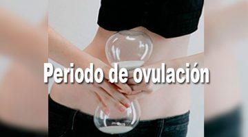 Periodo de ovulación | Riesgo de Embarazo