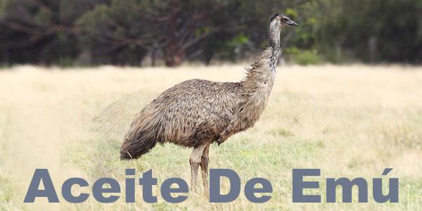 pájaro de emú