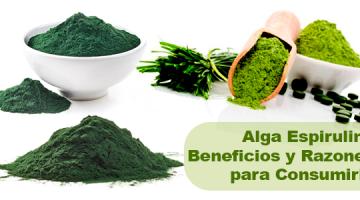 Alga Espirulina Beneficios y Razones para Consumirla