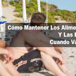 Cómo Mantener Los Alimentos Frescos Y Las Bebidas Frías Cuando Vas A La Playa