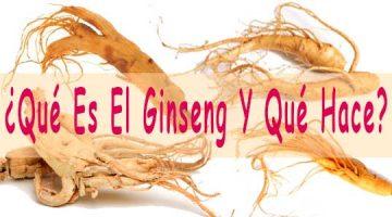 ¿Qué Es El Ginseng Y Qué Hace?