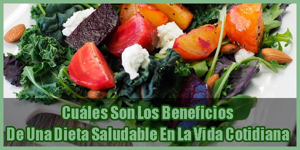 Cuáles Son Los Beneficios De Una Dieta Saludable En La Vida Cotidiana