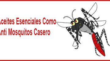 Aceites Esenciales Como Anti Mosquitos Casero