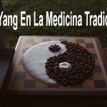 El Yin Y El Yang En La Medicina Tradicional China