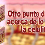 Celulitis Como Eliminarla - Otro Punto De Vista Acerca De Lo Que Es La Celulitis