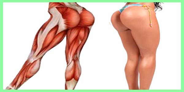 La parte inferior del cuerpo de la mujer tiene más de 90 músculos...